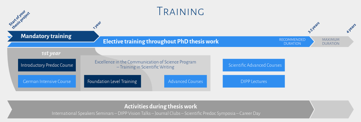 Infographic of the course of the training at the DIGS-BB